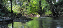 Habitats de água doce